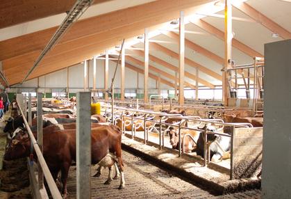 Proyectos de Explotaciones Ganaderas y Agro-Alimentarias